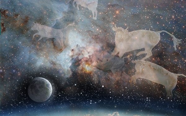 Cows in Space, by J. Drake, Leap day 2/29/2020