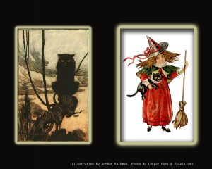 Rackman cat and witch with cat illustration